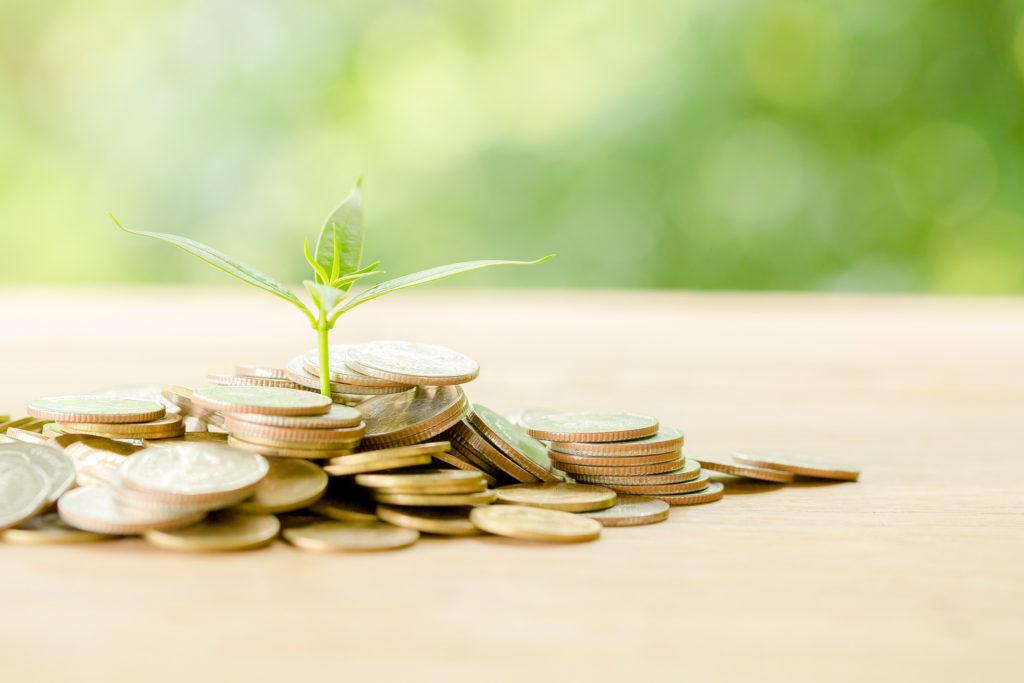 お金の勉強はどこから始めたらいいの?初心者向け必読書3選